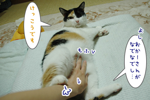 06_20090926002449.jpg