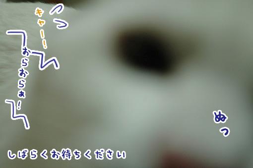 07_20090927131740.jpg
