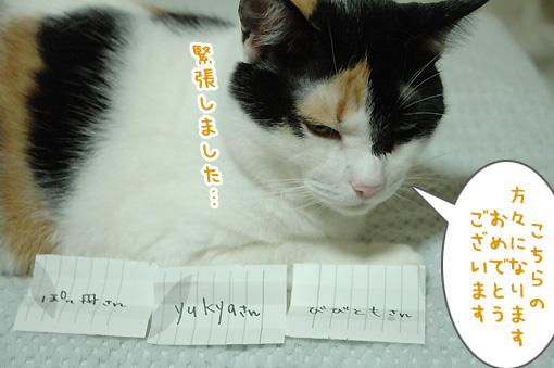 07_20091001225329.jpg