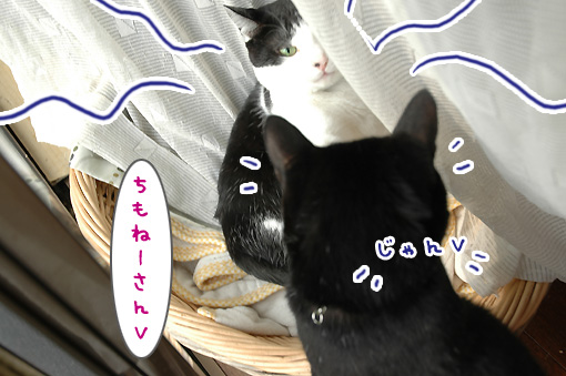 07_20091025231128.jpg