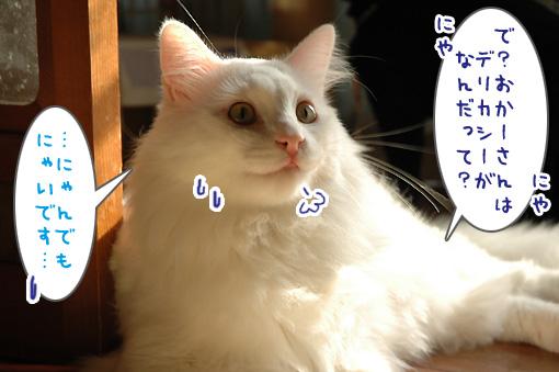 07_20091030001708.jpg