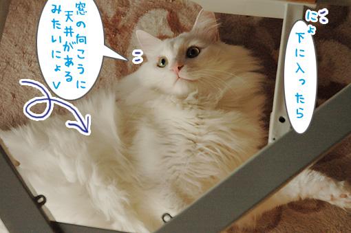 07_20091104235749.jpg