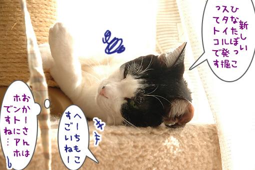 07_20100305180559.jpg