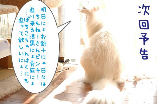 08_20091025231128.jpg
