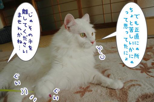 09_20090918235320.jpg