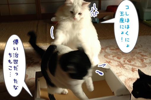09_20091107011013.jpg