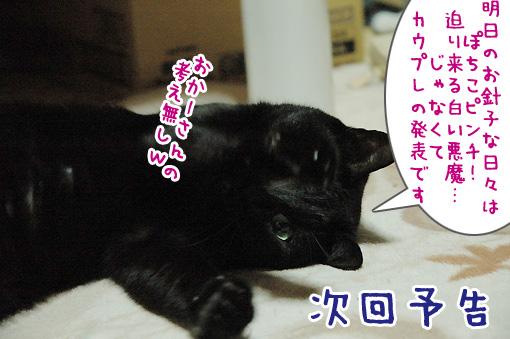 10_20090930235145.jpg