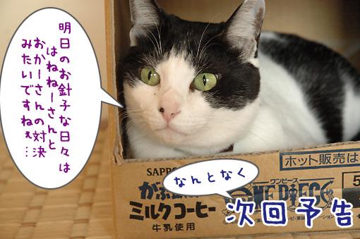 10_20091104235747.jpg