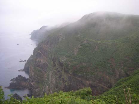 断崖絶壁の繁殖地