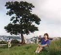 お母さんの木