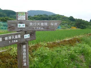 山の辺の道標識