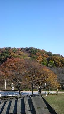 大学内からの景色