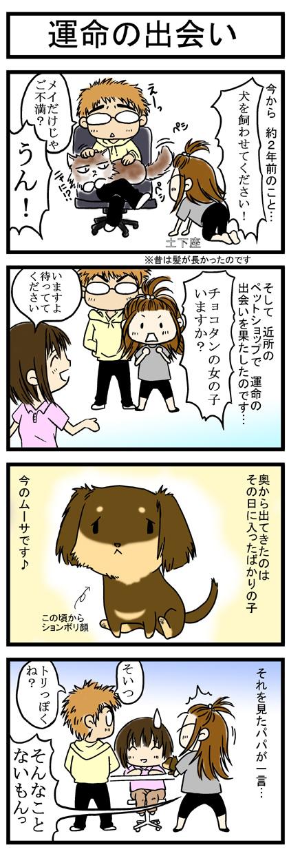 犬猫マンガ