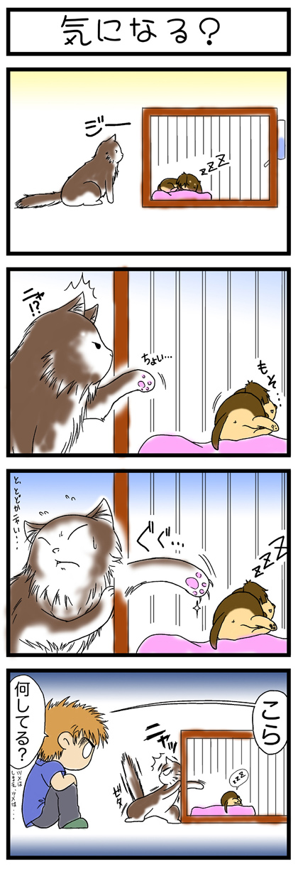 犬猫マンガ3作目