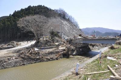 tsunami 291