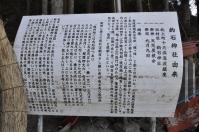 tsunami 476