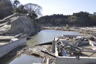 tsunami 614