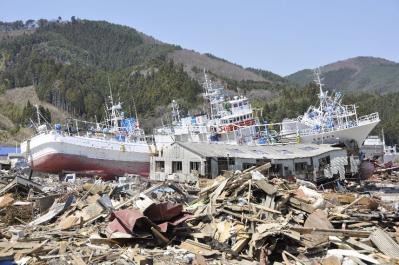 tsunami 751
