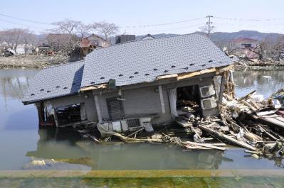tsunami 695