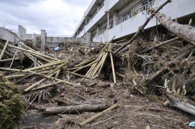 tsunami 1675