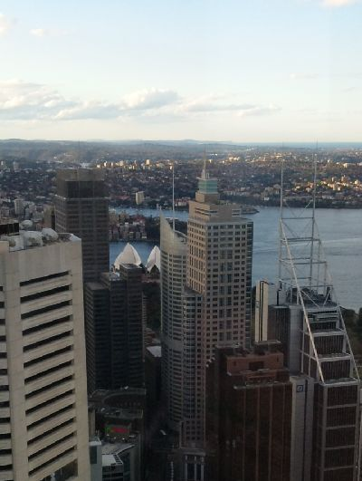 from the SydneyTower (1)