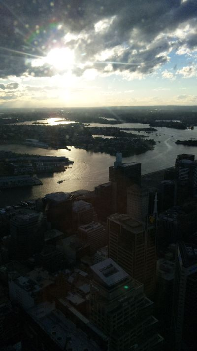 from the SydneyTower (4)