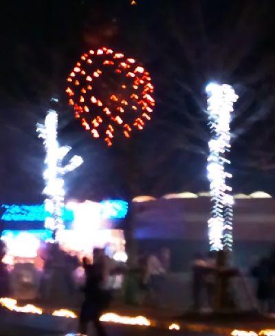 111223昭和記念公園 (5)