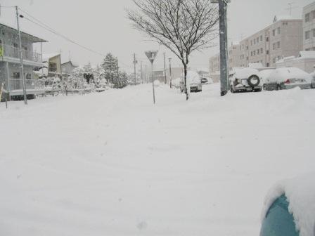 雪道散歩 015