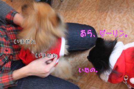 モコとあづきちゃん