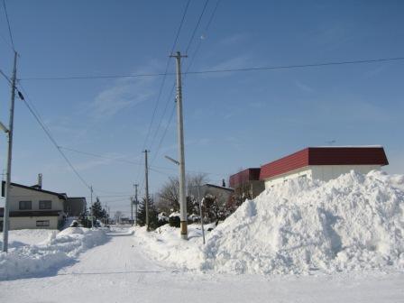冬のお散歩 001