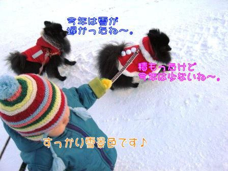 冬道散歩 069
