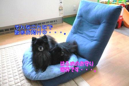 IMG_9152.jpg