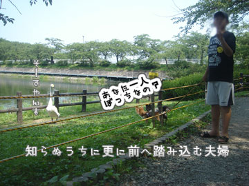 DSC08974.jpg