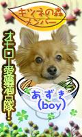 k_member_azuki.png