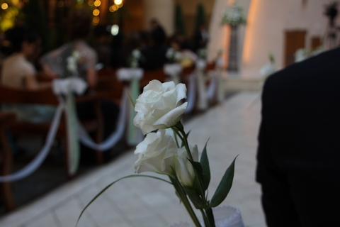 20081122_wedding1.jpg