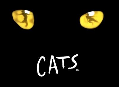20081213_cats.jpg