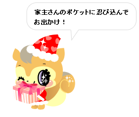 20081216-002_p.png