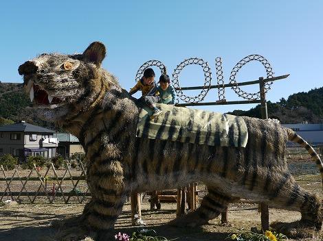 虎とねむのき 030