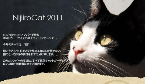 nijiiro01.jpg