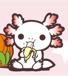 バナナは食べへんけども。