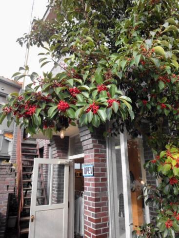 赤い実の店
