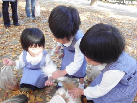 リプリーを触る三つ子たち