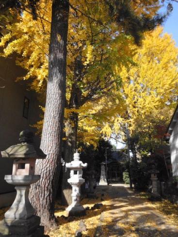 泉八幡神社。