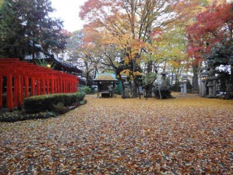 雨上がりの春日神社