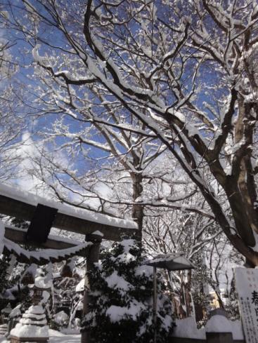 雪の春日神社