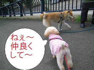 2009_0727_103113-IMG_5410.jpg