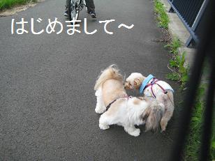 2009_0729_160749-IMG_5471.jpg