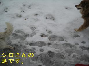 2012_0404_131733-IMG_7571.jpg