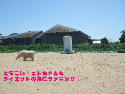 2009_08150045.jpg