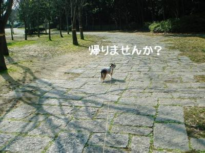 2009020602.jpg